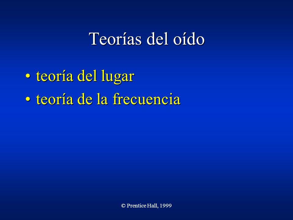 © Prentice Hall, 1999 Teorías del oído teoría del lugarteoría del lugar teoría de la frecuenciateoría de la frecuencia