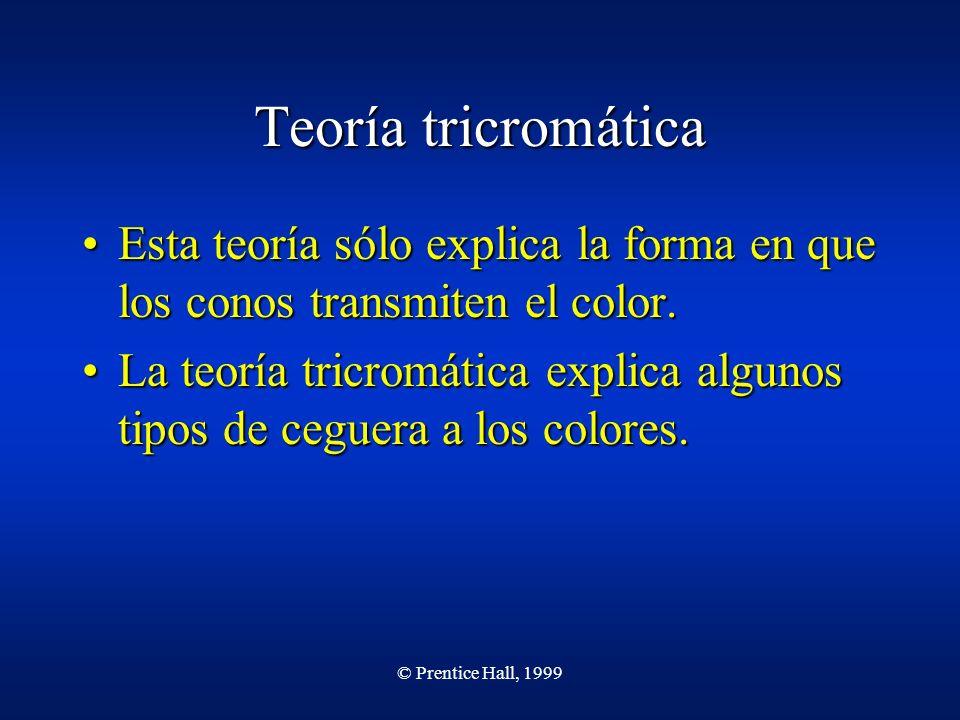 © Prentice Hall, 1999 Teoría tricromática Esta teoría sólo explica la forma en que los conos transmiten el color.Esta teoría sólo explica la forma en