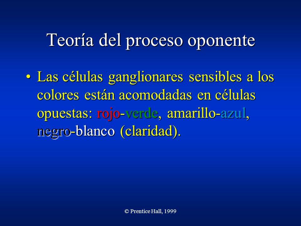 © Prentice Hall, 1999 Teoría del proceso oponente Las células ganglionares sensibles a los colores están acomodadas en células opuestas: rojo-verde, a