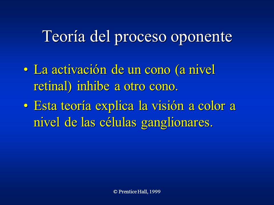© Prentice Hall, 1999 Teoría del proceso oponente La activación de un cono (a nivel retinal) inhibe a otro cono.La activación de un cono (a nivel reti