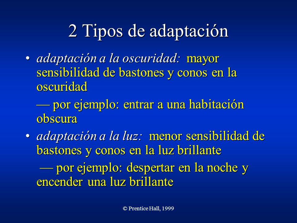 © Prentice Hall, 1999 2 Tipos de adaptación adaptación a la oscuridad: mayor sensibilidad de bastones y conos en la oscuridadadaptación a la oscuridad