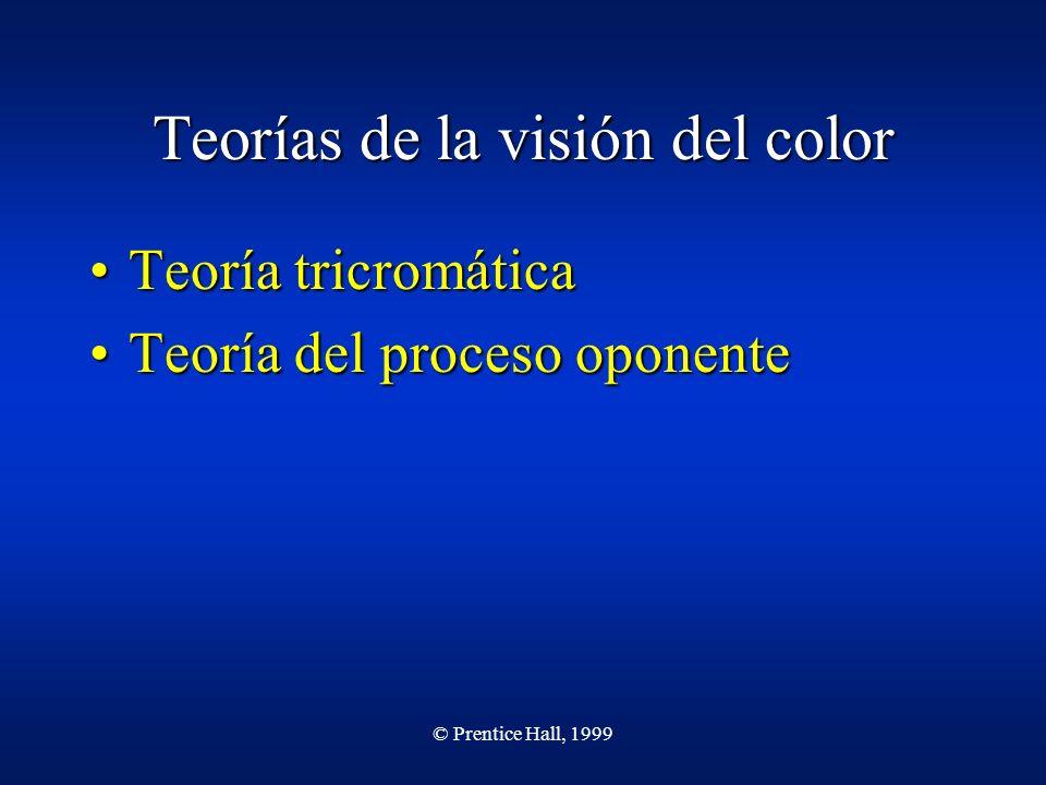 © Prentice Hall, 1999 Teorías de la visión del color Teoría tricromáticaTeoría tricromática Teoría del proceso oponenteTeoría del proceso oponente