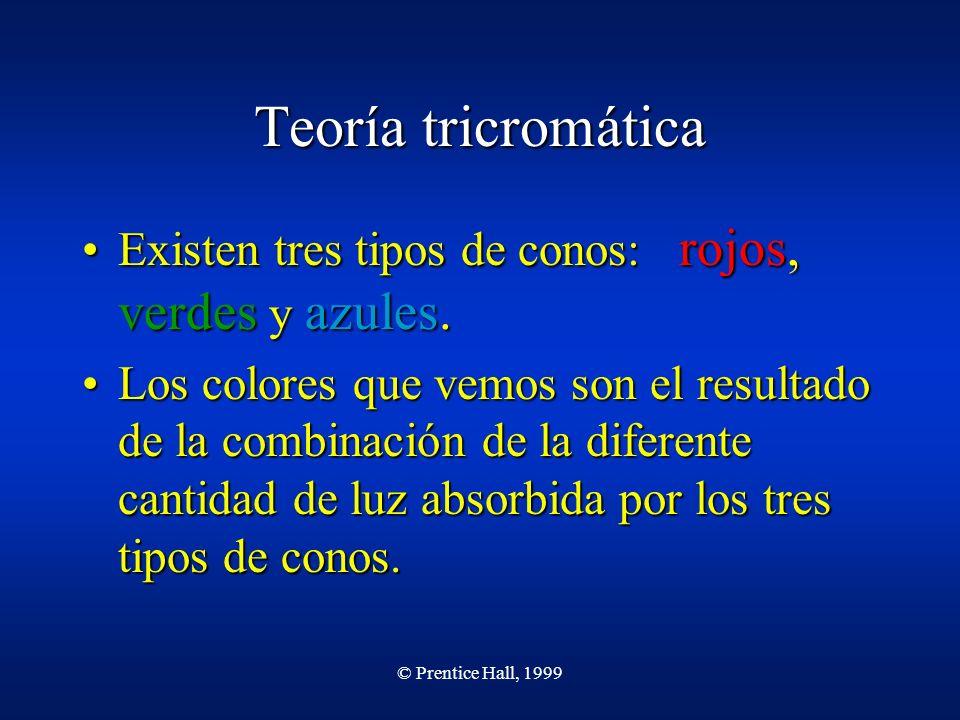 © Prentice Hall, 1999 Teoría tricromática Existen tres tipos de conos: rojos, verdes y azules.Existen tres tipos de conos: rojos, verdes y azules. Los