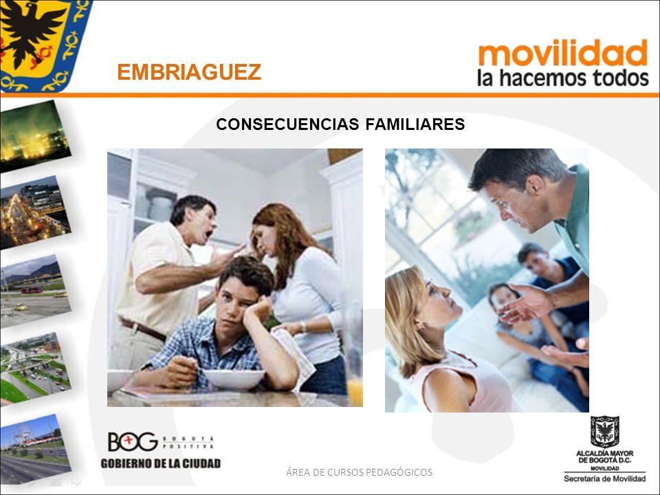 EMBRIAGUEZ ÁREA DE CURSOS PEDAGÓGICOS CONSECUENCIAS FAMILIARES