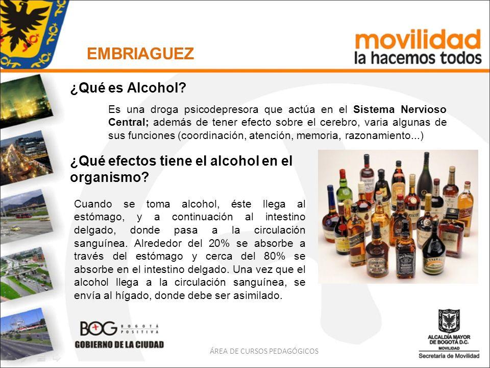 EMBRIAGUEZ ÁREA DE CURSOS PEDAGÓGICOS ¿Qué es alcoholemia.