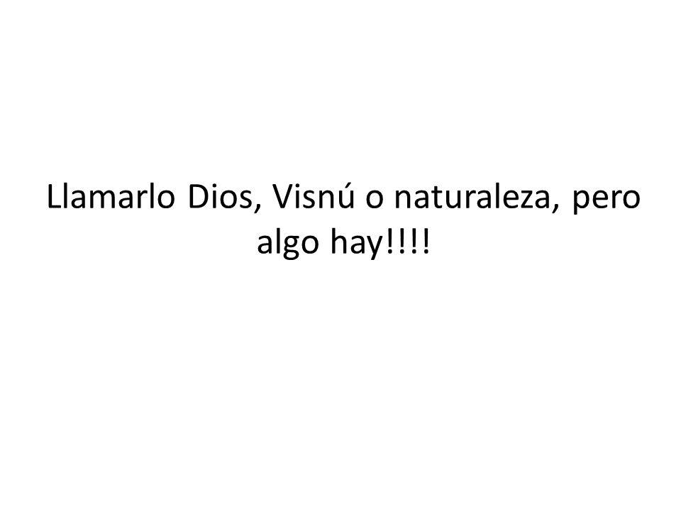 Llamarlo Dios, Visnú o naturaleza, pero algo hay!!!!