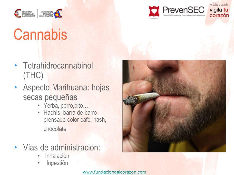 www.fundaciondelcorazon.com Tetrahidrocannabinol (THC) Aspecto Marihuana: hojas secas pequeñas Yerba, porro,pito…. Hachís: barra de barro prensado col