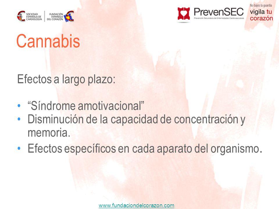 www.fundaciondelcorazon.com Efectos a largo plazo: Síndrome amotivacional Disminución de la capacidad de concentración y memoria. Efectos específicos