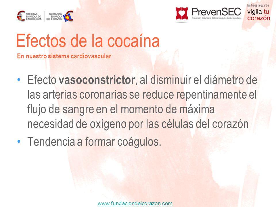 www.fundaciondelcorazon.com Efecto vasoconstrictor, al disminuir el diámetro de las arterias coronarias se reduce repentinamente el flujo de sangre en