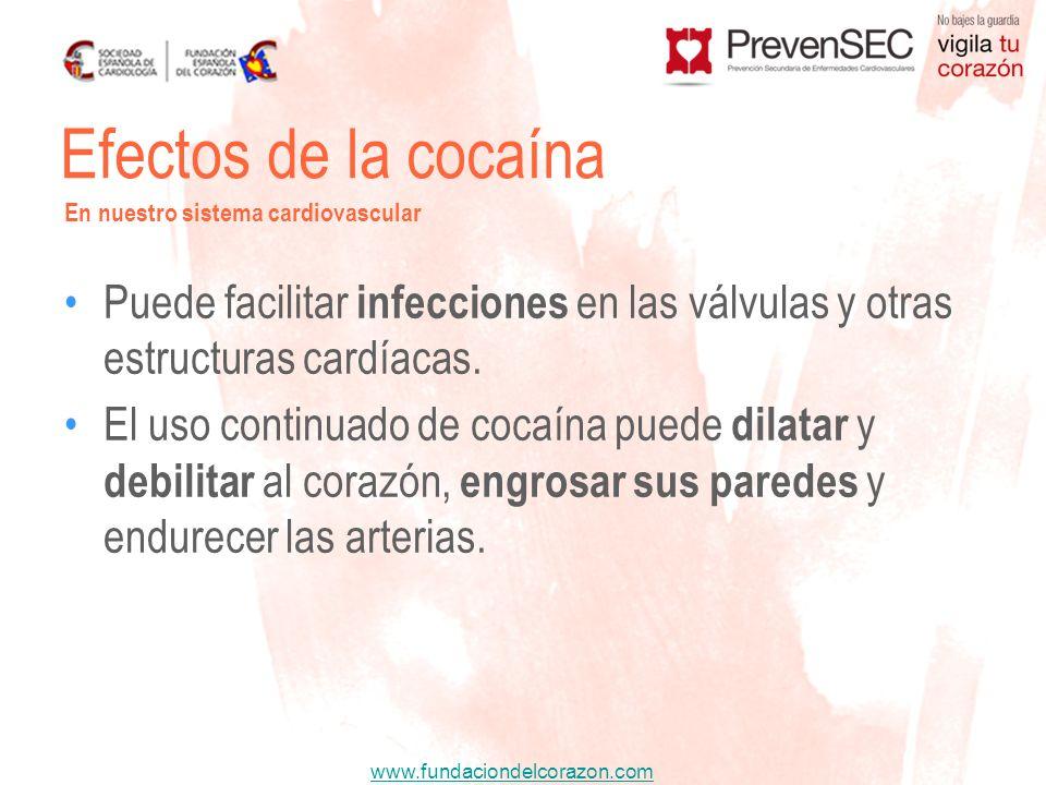 www.fundaciondelcorazon.com Puede facilitar infecciones en las válvulas y otras estructuras cardíacas. El uso continuado de cocaína puede dilatar y de