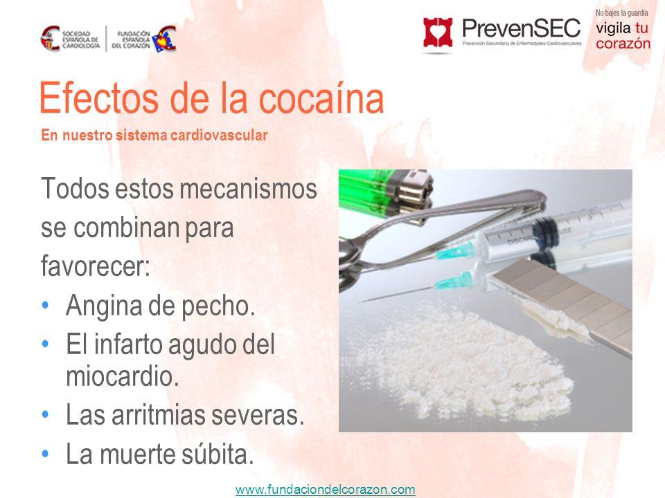 www.fundaciondelcorazon.com Todos estos mecanismos se combinan para favorecer: Angina de pecho. El infarto agudo del miocardio. Las arritmias severas.