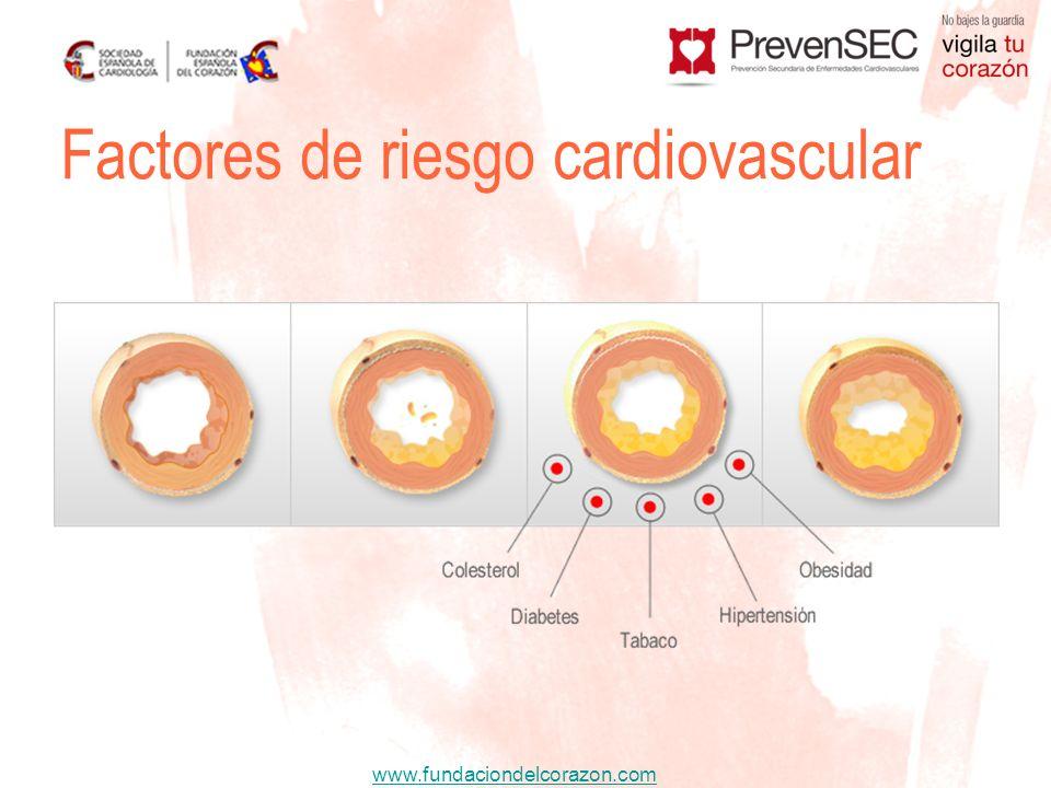 www.fundaciondelcorazon.com Factores de riesgo cardiovascular