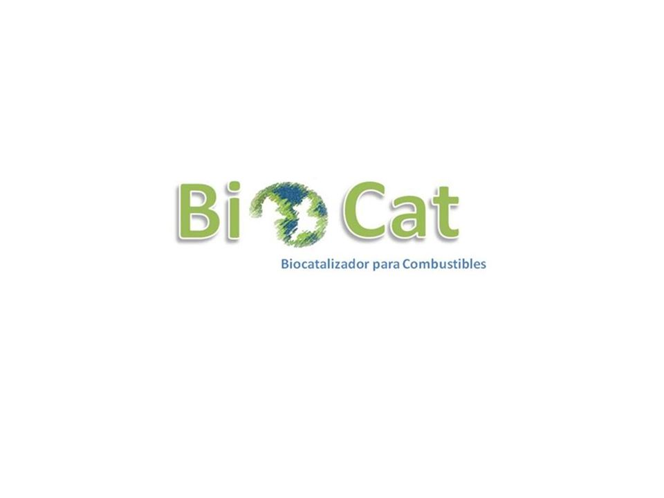 BioCat Nuestro Catalizador Enzimático Biodegradable, está basado en los trabajos sobre la frecuencia de la materia de Walter Ritz, así como en la dispersión de los cristales catalizadores debido a que los catalizadores funcionan por superficie y no por masa, al reducir el tamaño de éstos se potencializa miles de veces su eficiencia.