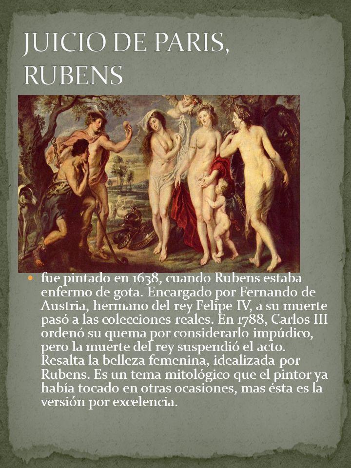 fue pintado en 1638, cuando Rubens estaba enfermo de gota. Encargado por Fernando de Austria, hermano del rey Felipe IV, a su muerte pasó a las colecc