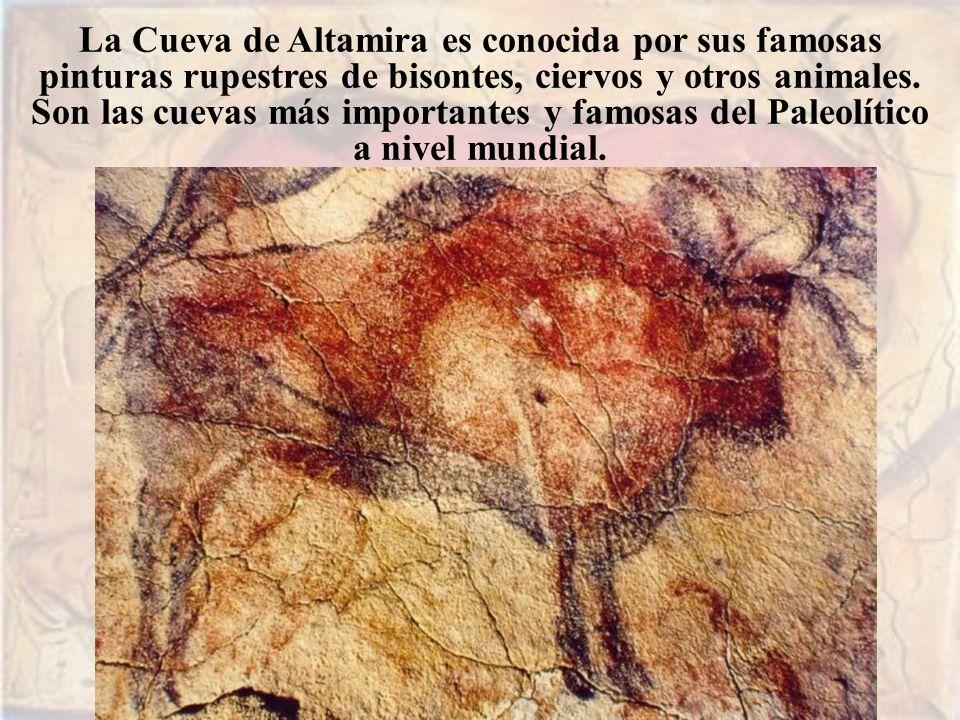 La Cueva de Altamira es conocida por sus famosas pinturas rupestres de bisontes, ciervos y otros animales. Son las cuevas más importantes y famosas de
