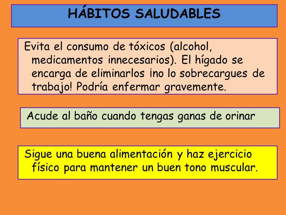 Evita el consumo de tóxicos (alcohol, medicamentos innecesarios). El hígado se encarga de eliminarlos ¡no lo sobrecargues de trabajo! Podría enfermar