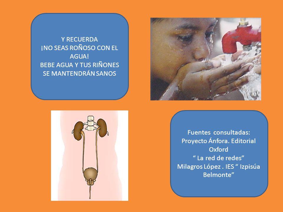 Fuentes consultadas: Proyecto Ánfora. Editorial Oxford La red de redes Milagros López. IES Izpisúa Belmonte Y RECUERDA ¡NO SEAS ROÑOSO CON EL AGUA! BE