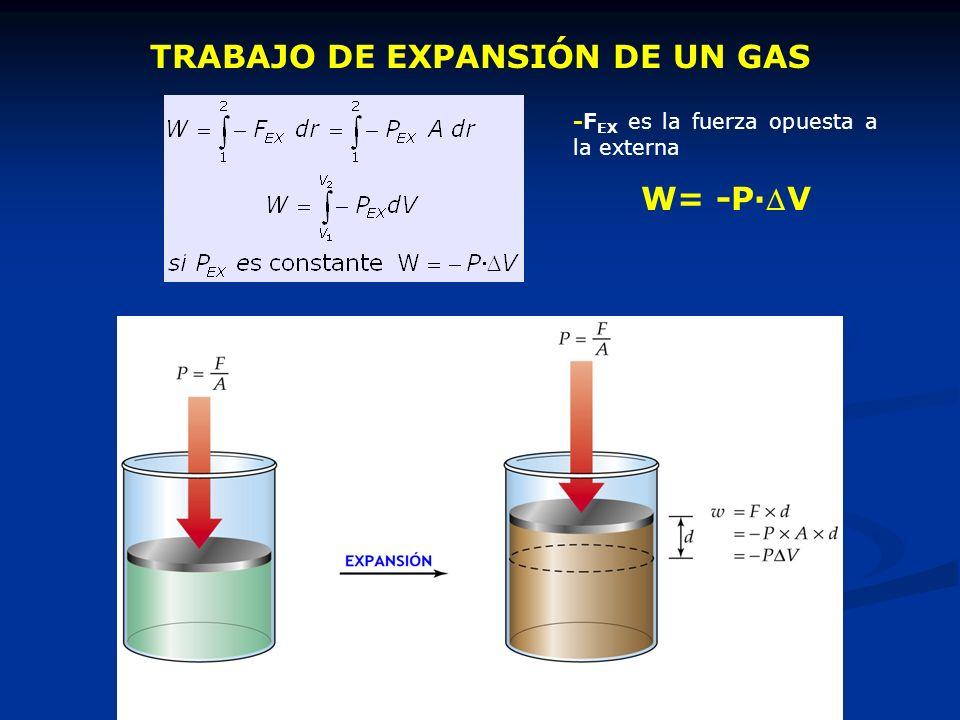 TRABAJO DE EXPANSIÓN DE UN GAS -F EX es la fuerza opuesta a la externa W= -P·V