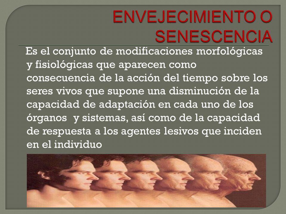 La pérdida progresiva de la visión, pérdida de elasticidad muscular; perdida de agilidad y reflejos; degeneración de estructuras óseas; aparición de síntomas relacionados a la demencia senil, alzhéimer, pérdida de memoria, de la fuerza muscular, de audición, hipertensión, entre otras.
