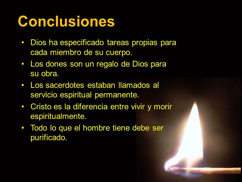 Conclusiones Dios ha especificado tareas propias para cada miembro de su cuerpo.Dios ha especificado tareas propias para cada miembro de su cuerpo. Lo