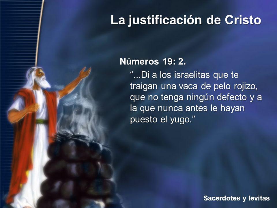 Sacerdotes y levitas La justificación de Cristo Números 19: 2....Di a los israelitas que te traigan una vaca de pelo rojizo, que no tenga ningún defec