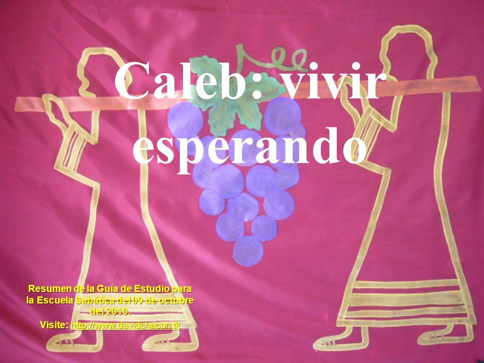 Caleb: vivir esperando Resumen de la Guía de Estudio para la Escuela Sabática del 09 de octubre del 2010. Visite: http://www.davidchacon.tk http://www