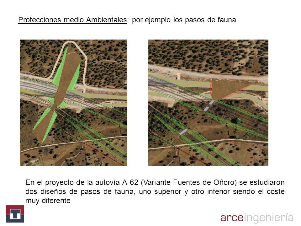 Protecciones medio Ambientales: por ejemplo los pasos de fauna En el proyecto de la autovía A-62 (Variante Fuentes de Oñoro) se estudiaron dos diseños