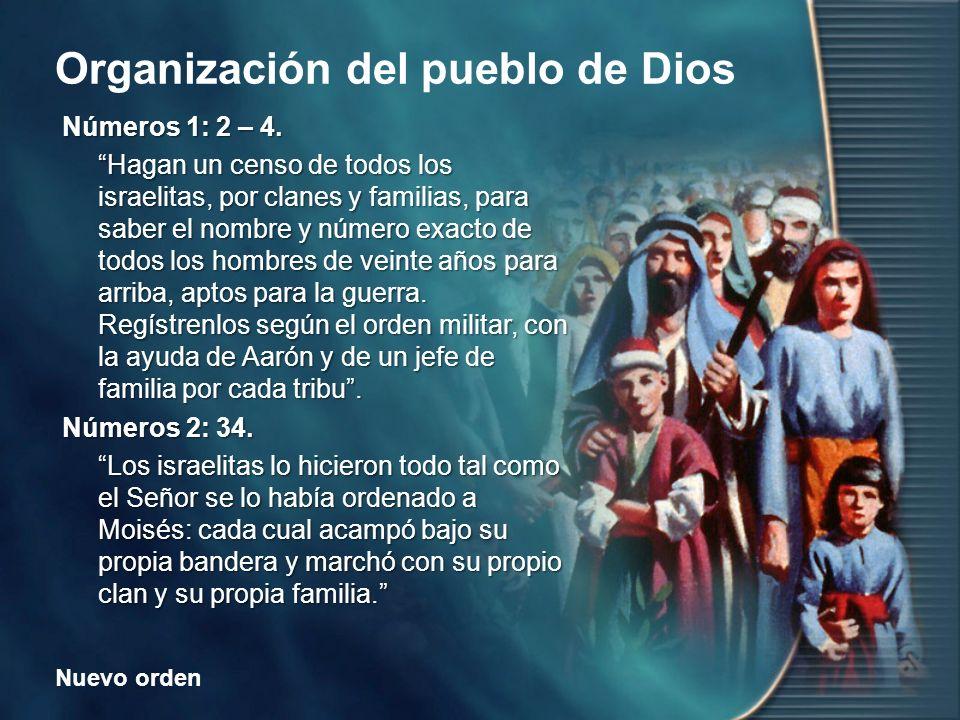 Nuevo orden Organización del pueblo de Dios ¿Qué detalles se consideraron al realizar el censo.