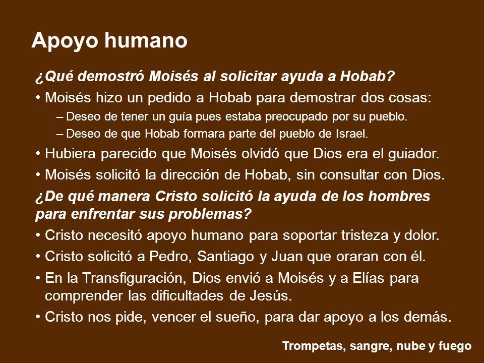 Trompetas, sangre, nube y fuego Apoyo humano ¿Qué demostró Moisés al solicitar ayuda a Hobab.