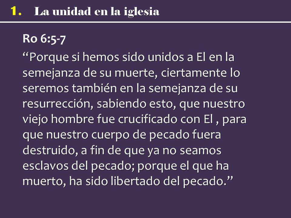 La unidad en la iglesia 1. Ro 6:5-7 Porque si hemos sido unidos a El en la semejanza de su muerte, ciertamente lo seremos también en la semejanza de s