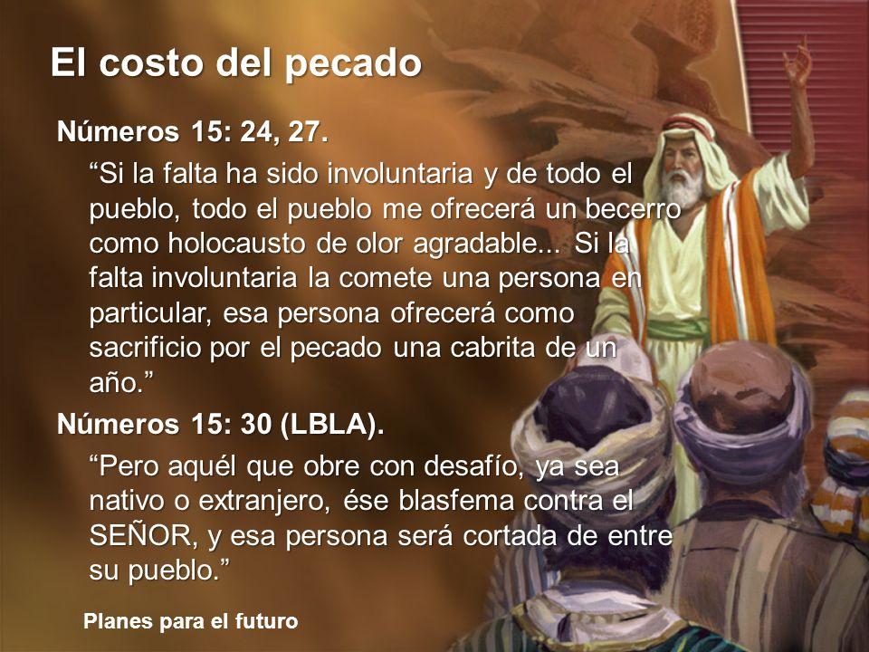 Planes para el futuro El costo del pecado Números 15: 24, 27. Si la falta ha sido involuntaria y de todo el pueblo, todo el pueblo me ofrecerá un bece