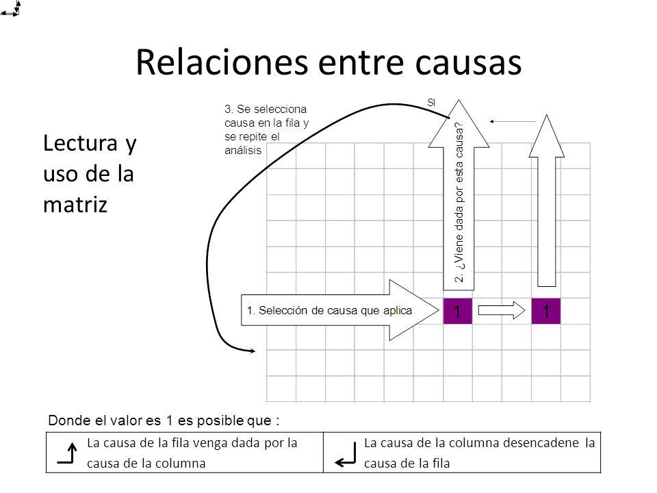 Lectura y uso de la matriz Relaciones entre causas La causa de la fila venga dada por la causa de la columna La causa de la columna desencadene la causa de la fila Donde el valor es 1 es posible que :