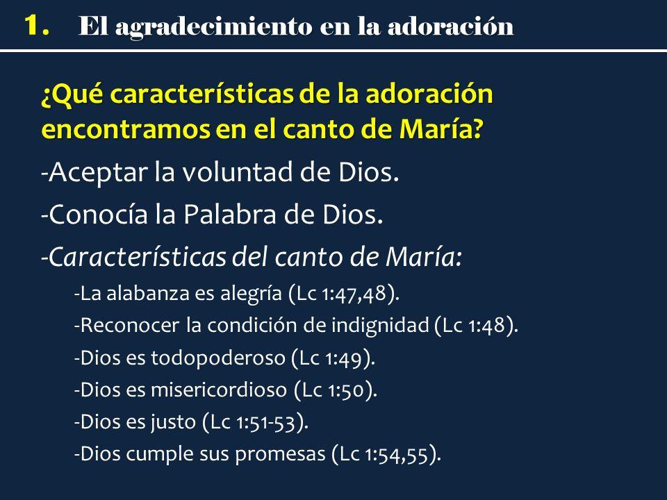 El agradecimiento en la adoración 1. ¿Qué características de la adoración encontramos en el canto de María? -Aceptar la voluntad de Dios. -Conocía la