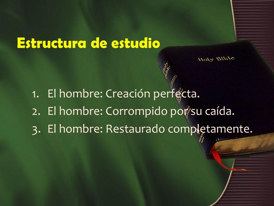 Estructura de estudio 1.El hombre: Creación perfecta. 2.El hombre: Corrompido por su caída. 3.El hombre: Restaurado completamente.