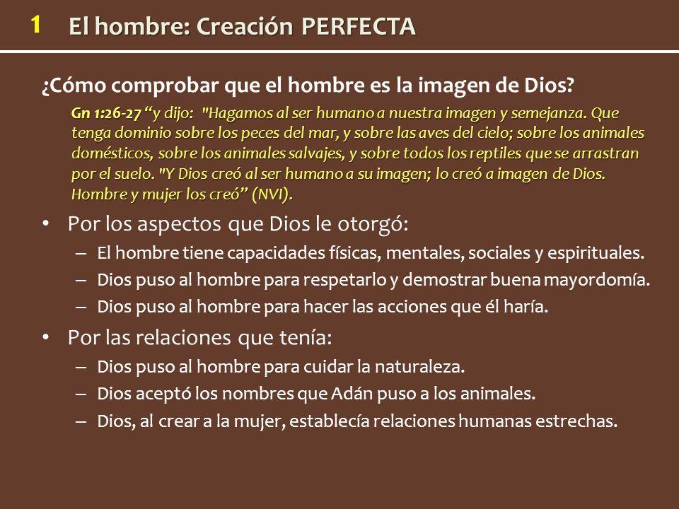 1 ¿Cómo comprobar que el hombre es la imagen de Dios? Gn 1:26-27 y dijo: