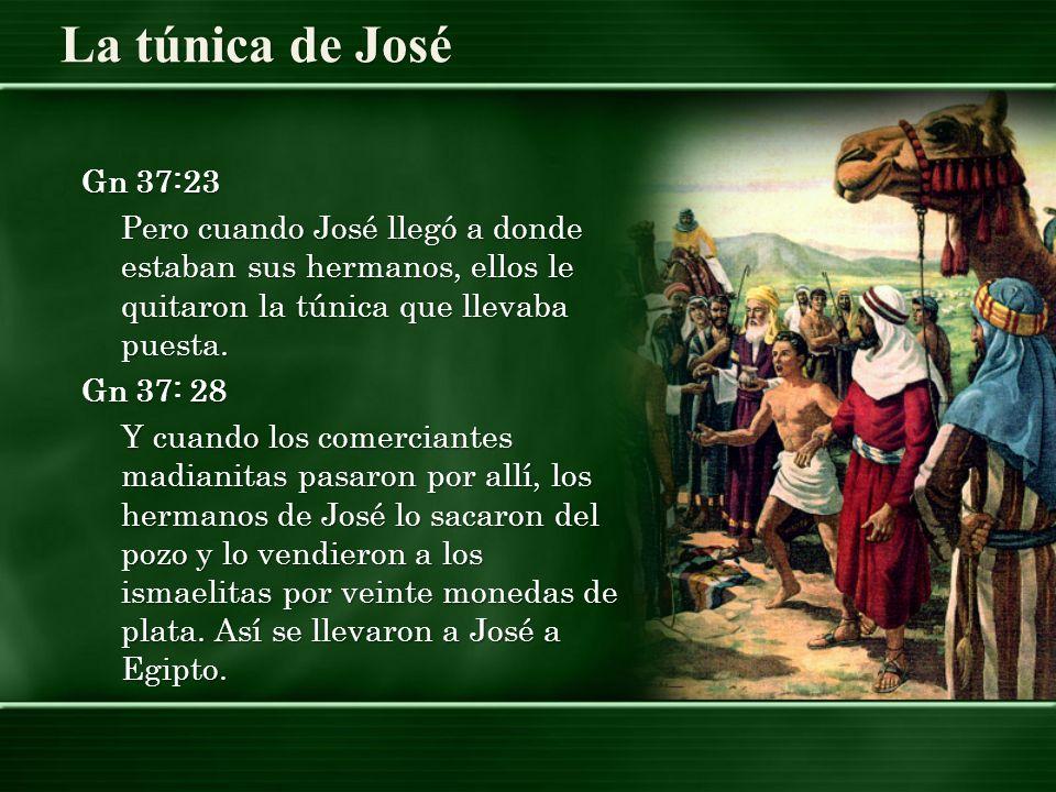 La túnica de José Gn 37:23 Pero cuando José llegó a donde estaban sus hermanos, ellos le quitaron la túnica que llevaba puesta. Gn 37: 28 Y cuando los