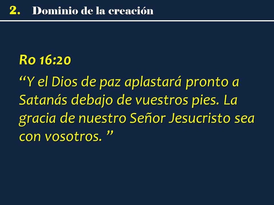 Dominio de la creación 2.
