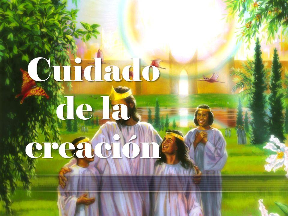 1.Sal 24:1,2 Del SEÑOR es la tierra y todo lo que hay en ella; el mundo y los que en él habitan.