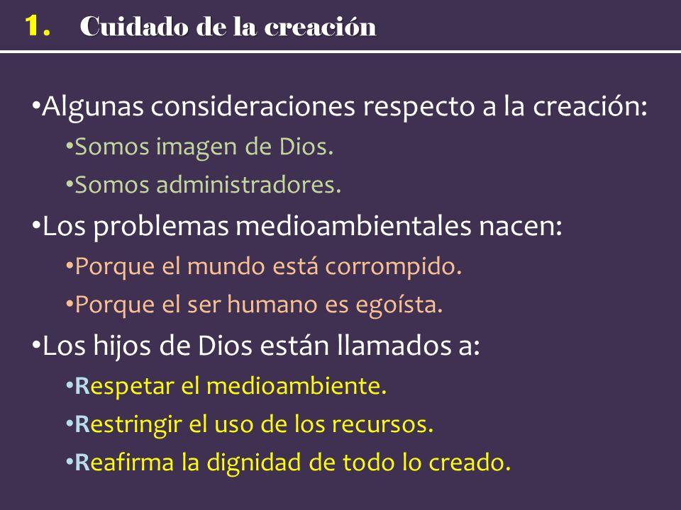 Cuidado de la creación 1. Algunas consideraciones respecto a la creación: Somos imagen de Dios. Somos administradores. Los problemas medioambientales