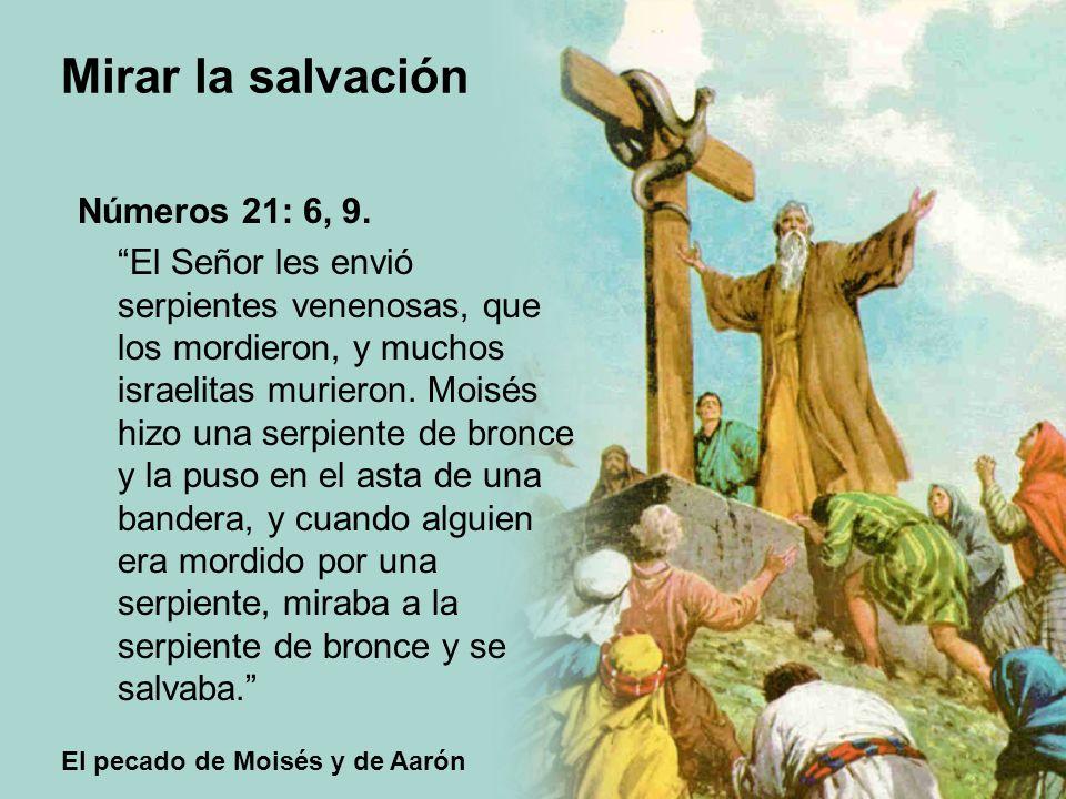 El pecado de Moisés y de Aarón Mirar la salvación Números 21: 6, 9. El Señor les envió serpientes venenosas, que los mordieron, y muchos israelitas mu