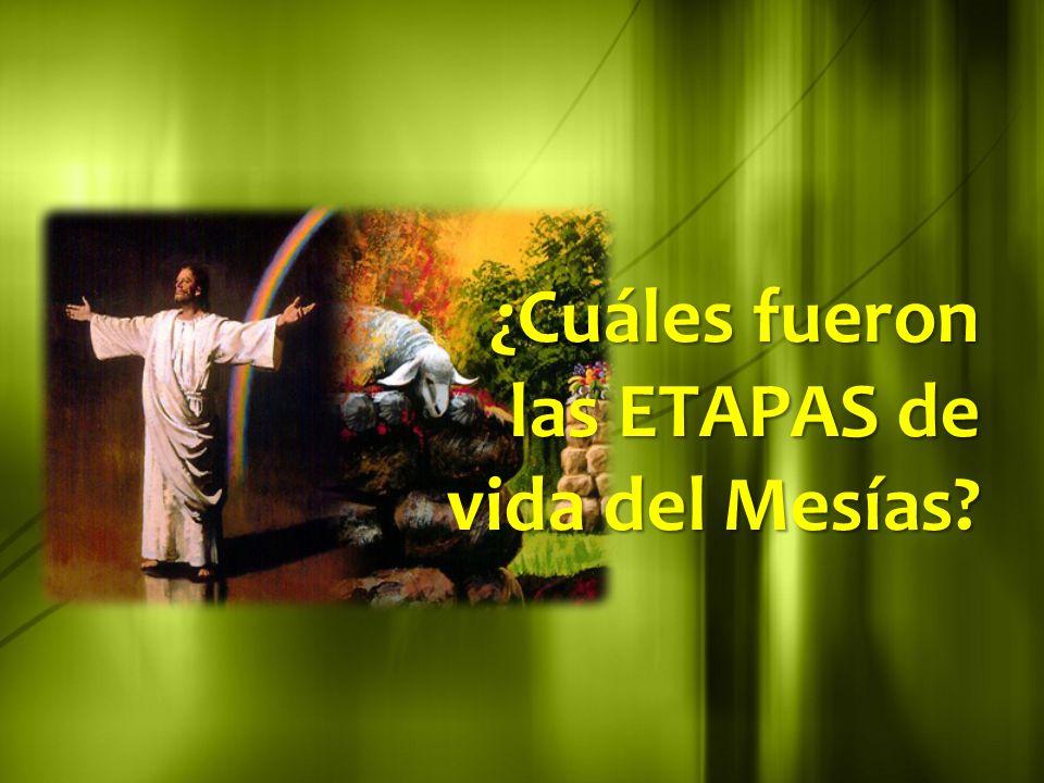 ¿Cuáles fueron las ETAPAS de vida del Mesías?