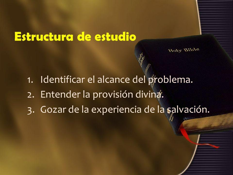Estructura de estudio 1.Identificar el alcance del problema. 2.Entender la provisión divina. 3.Gozar de la experiencia de la salvación.