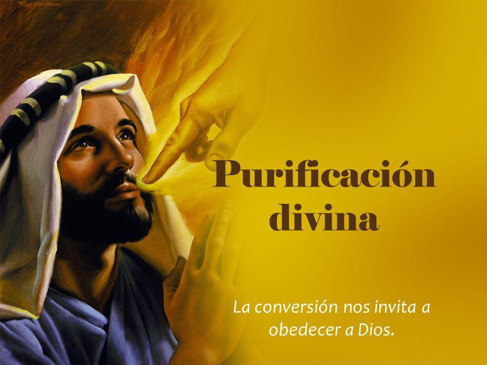 Purificación divina La conversión nos invita a obedecer a Dios.
