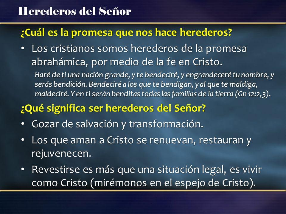 Herederos del Señor ¿Cuál es la promesa que nos hace herederos? Los cristianos somos herederos de la promesa abrahámica, por medio de la fe en Cristo.