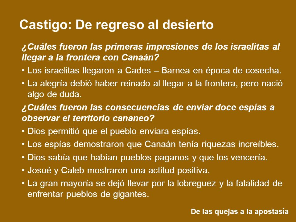 De las quejas a la apostasía Castigo: De regreso al desierto ¿Cuáles fueron las primeras impresiones de los israelitas al llegar a la frontera con Can