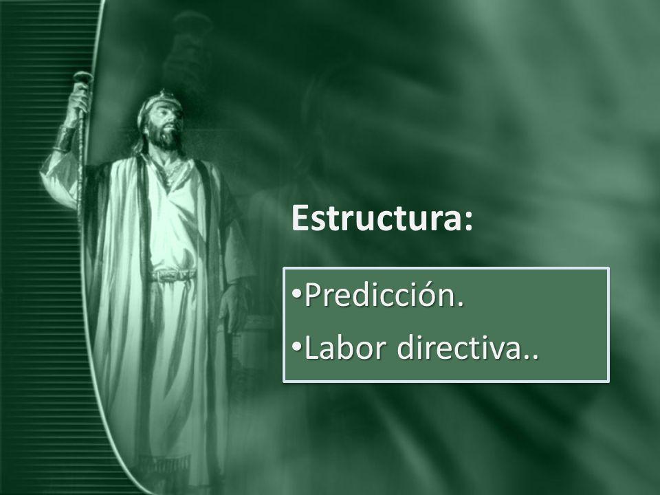 Estructura: Predicción. Predicción. Labor directiva.. Labor directiva.. Predicción. Predicción. Labor directiva.. Labor directiva..