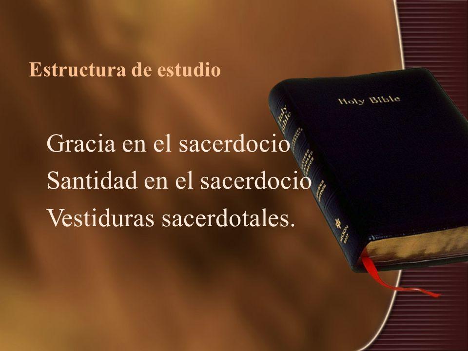 Estructura de estudio Gracia en el sacerdocio Santidad en el sacerdocio Vestiduras sacerdotales.
