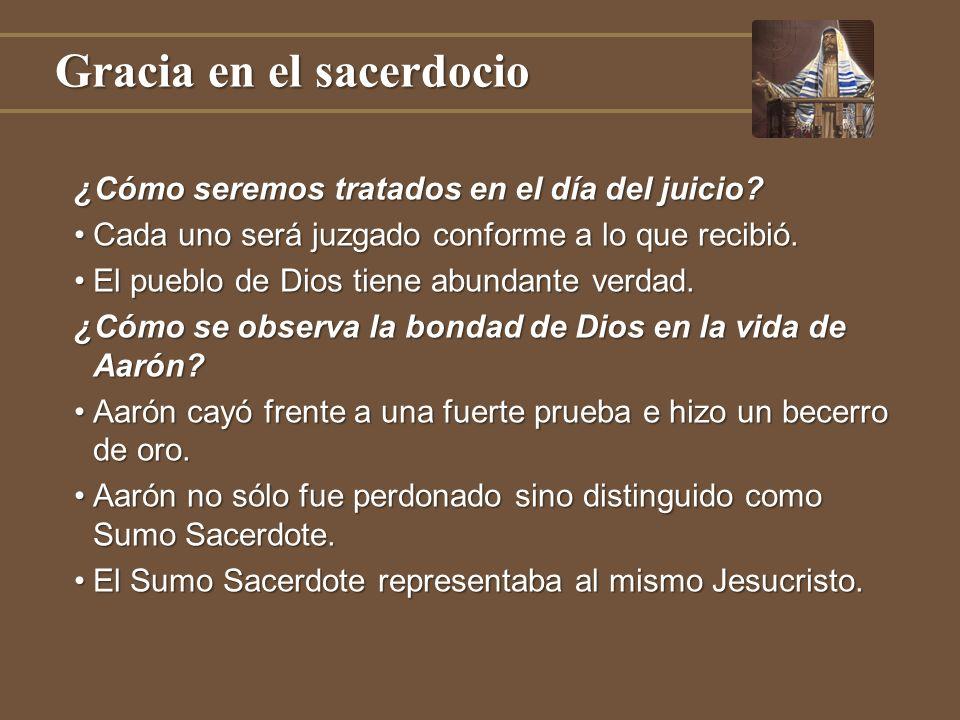 Gracia en el sacerdocio ¿Cómo seremos tratados en el día del juicio? Cada uno será juzgado conforme a lo que recibió.Cada uno será juzgado conforme a