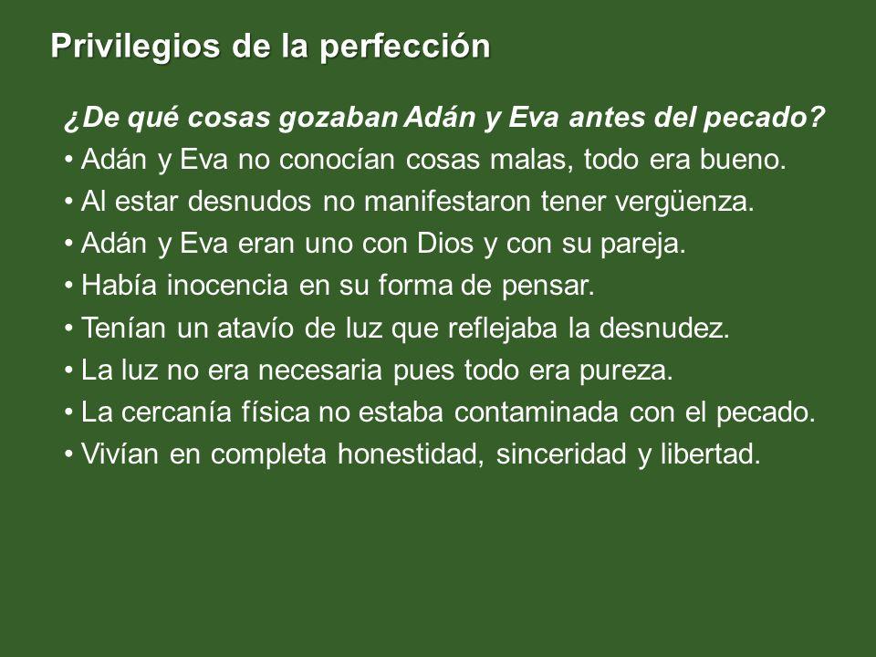 Privilegios de la perfección ¿De qué cosas gozaban Adán y Eva antes del pecado? Adán y Eva no conocían cosas malas, todo era bueno. Al estar desnudos
