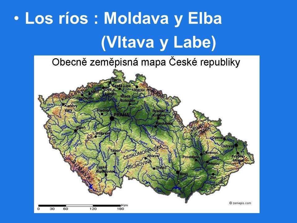 Los ríos : Moldava y Elba (Vltava y Labe)